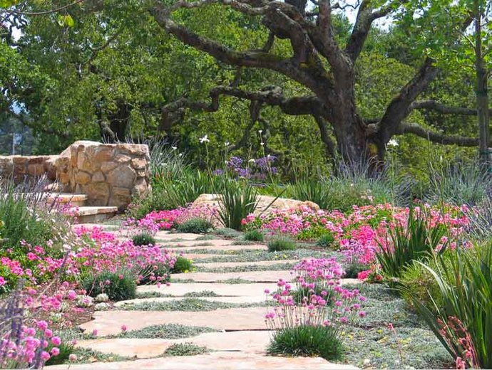 hardscapes and design